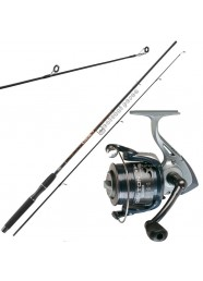 Combo Spinning Catch 2.40 m 35 g+Dayton FD 4000 Spooled