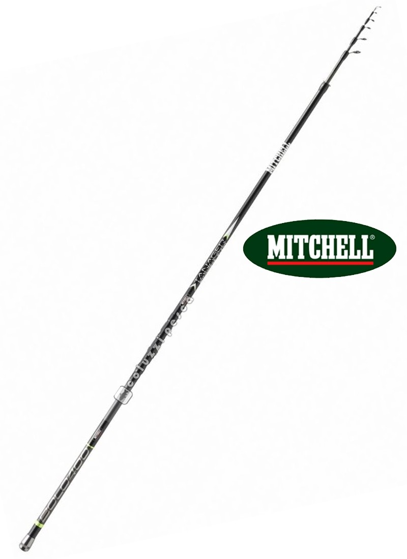 Canna Mitchell Tanager Bolo 4 m