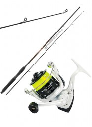 Combo Spinning Catch 2.70 m 40 g+Vektor FD 4000 Spooled
