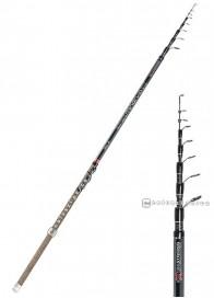 Canna Sele Minerva 4 m 20-50 g